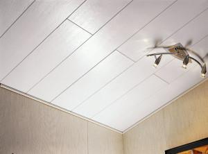 Фото: Потолок из пластиковых панелей