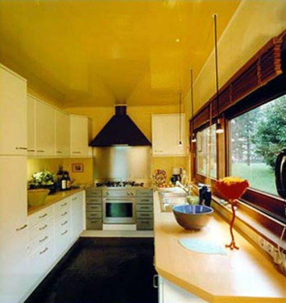 Фото: Цвет отлично подойдет для кухни