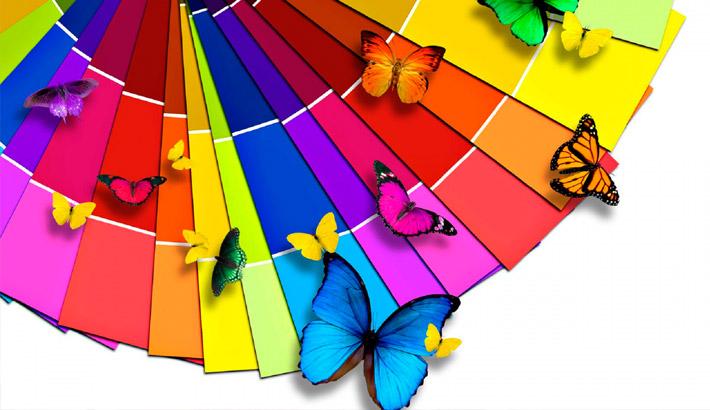 Фото: Варианты подборки цвета