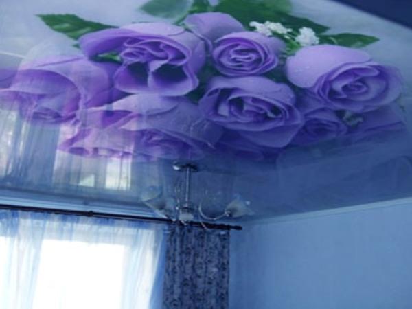 Печать на натяжных потолках — новый дизайн помещения