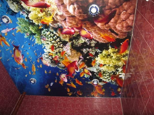 Декор натяжных потолков — фантастические покрытия в вашем доме
