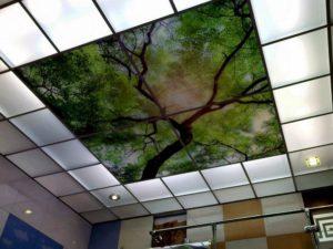 Плитка для подвесного потолка «Армстронг» — отличный вариант отделки помещений