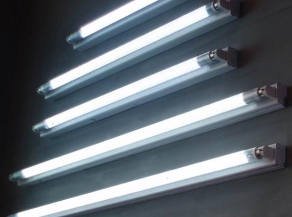 Фото: Люминесцентные лампы