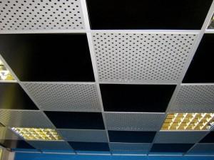 Фото: Особенности поверхности